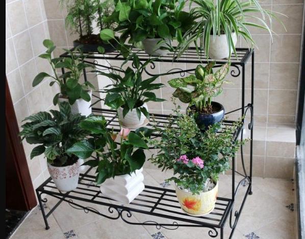Kệ trồng cây 3 tầng thích hợp với ban công, sân vườn có diện tích nhỏ hẹp